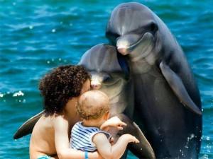 matka-s-ditetem-a-delfiny.jpg